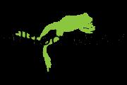 logo BullfrogPower
